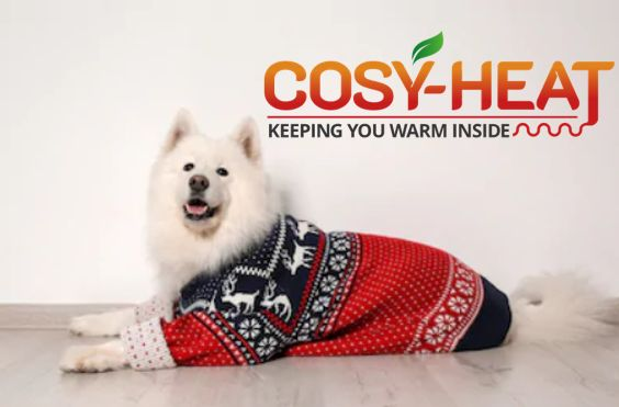 Christmas Cosy Heat